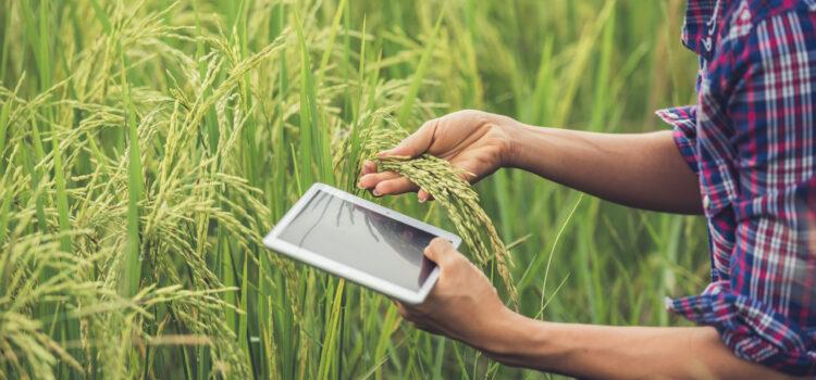 Jornada técnica. Seguridad y salud en la agricultura (I+D+i): retos de futuro